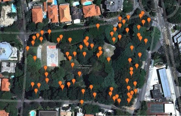 localização das árvores